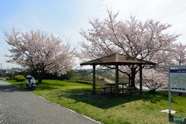 Irumagawa2016040902